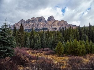 Castle Mountain view, Bow Valley Parkway