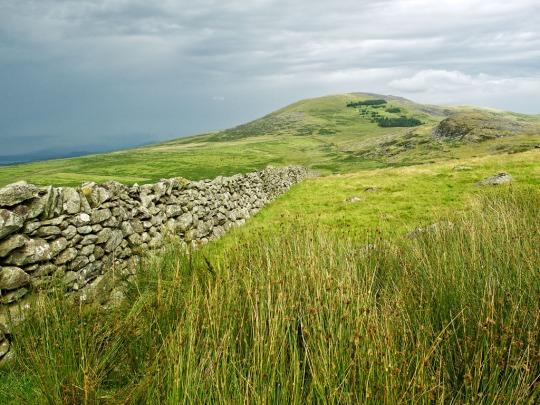 Stone wall, Wales