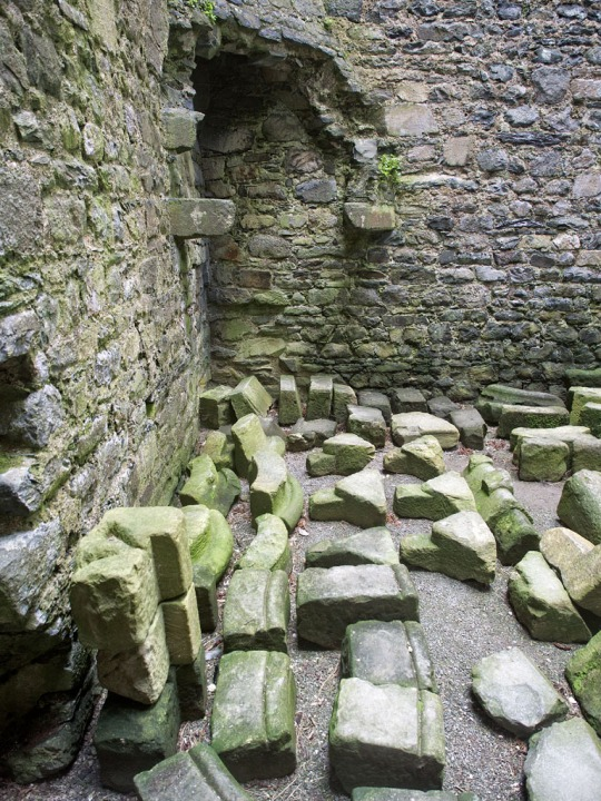 Mossy rock and stone- Harlech Castle interior, Harlech Wales