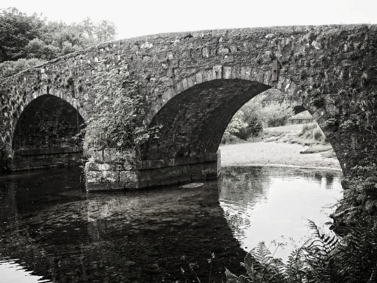 Artistic black-and-white photograph- tour of Devon and Cornwall