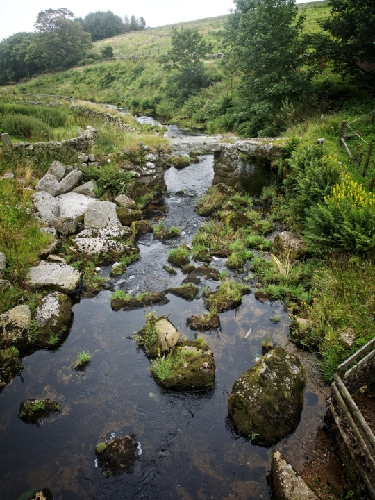 Lovely creek-tour of Devon and Cornwall