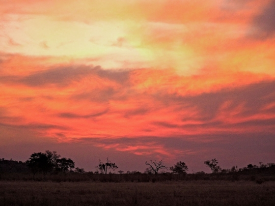 Beautiful Africa Sunset, Savuti Botswana